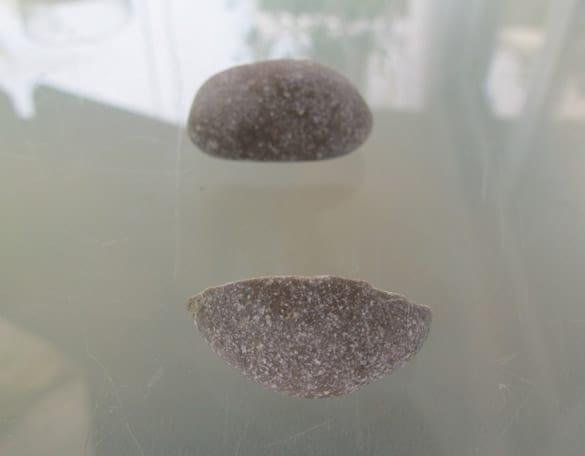 steinfund11