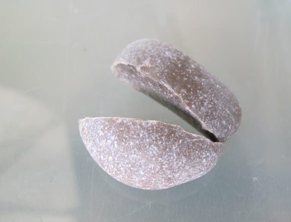 steinfund12