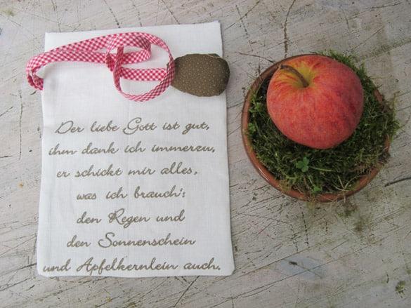 haenschen-apfelkern-sophia-