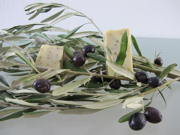 naturseife-olivenseife-selb
