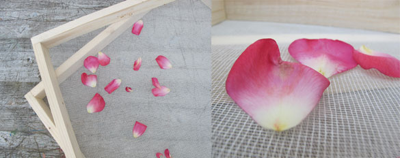 rosenresli-trocknen